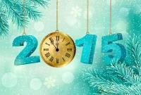 Новый год 2015 - фото 0795