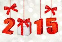 Новый год 2015 - фото 0796