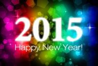 Новый год 2015 - фото 0799