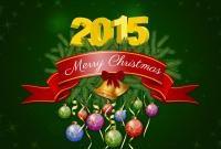Новый год 2015 - фото 0807
