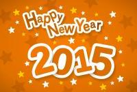 Новый год 2015 - фото 0808