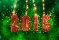 Новый год 2015 - фото 0813