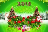 Новый год 2015 - фото 0818