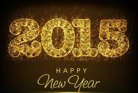 Новый год 2015 - фото 0819