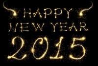 Новый год 2015 - фото 0820