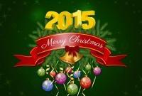 Новый год 2015 - фото 0824