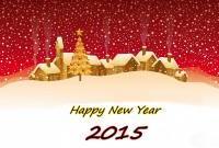Новый год 2015 - фото 0826