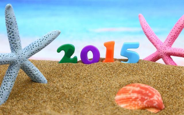 Новый год 2015 - фото 0834