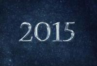 Новый год 2015 - фото 0837